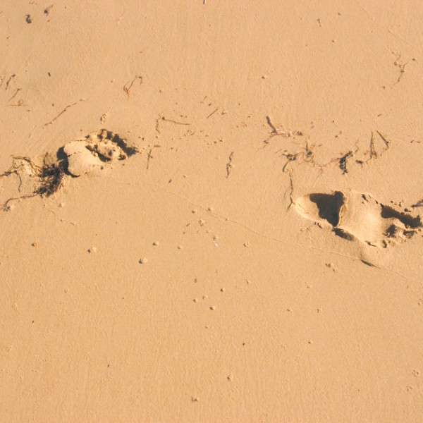 freycinet coles bay foot prints  in sand
