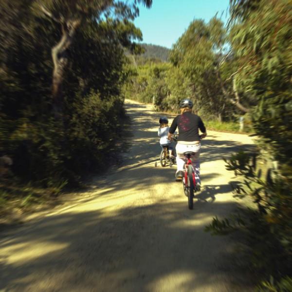 mountain bike coles bay freycinet